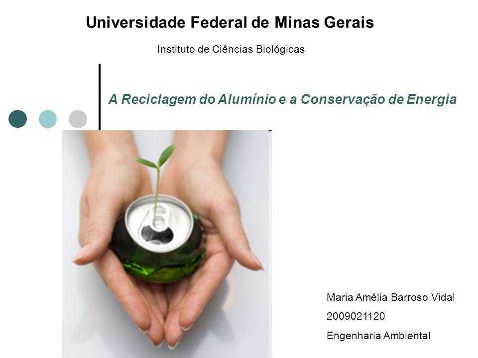 A Reciclagem do Alumínio e a Conservação de Energia Instituto de Ciências Biológicas Universidade Federal de Minas Gerais Maria Amélia Barroso Vidal 2