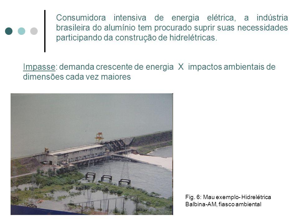 Consumidora intensiva de energia elétrica, a indústria brasileira do alumínio tem procurado suprir suas necessidades participando da construção de hid