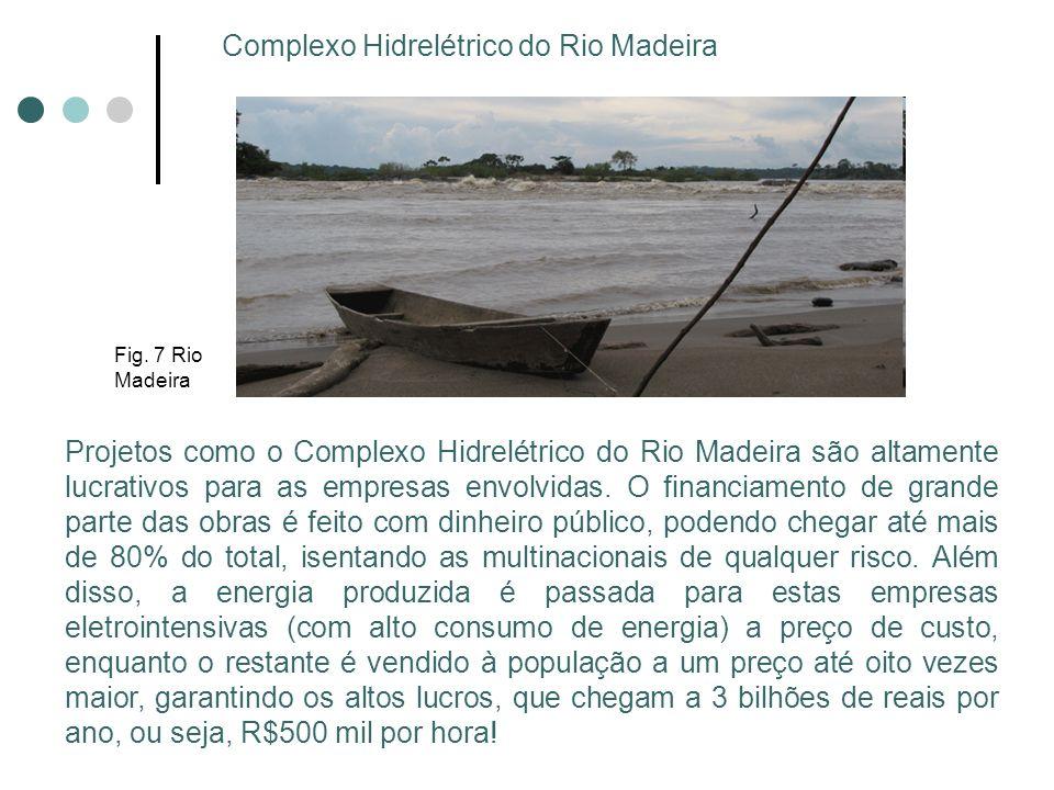 Complexo Hidrelétrico do Rio Madeira Projetos como o Complexo Hidrelétrico do Rio Madeira são altamente lucrativos para as empresas envolvidas. O fina