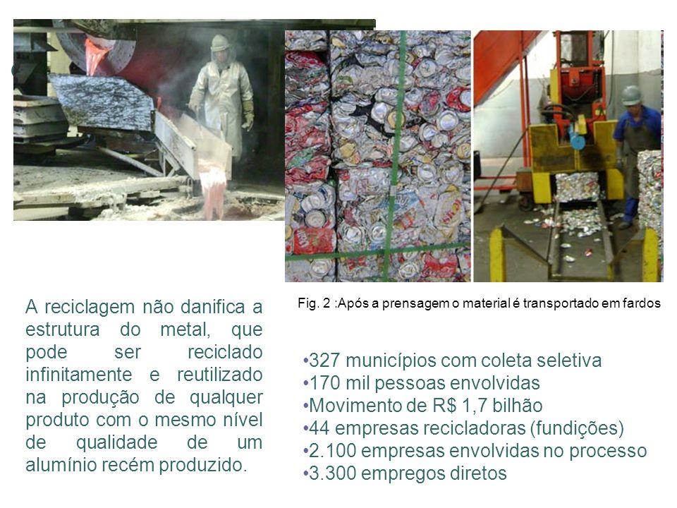 327 municípios com coleta seletiva 170 mil pessoas envolvidas Movimento de R$ 1,7 bilhão 44 empresas recicladoras (fundições) 2.100 empresas envolvida