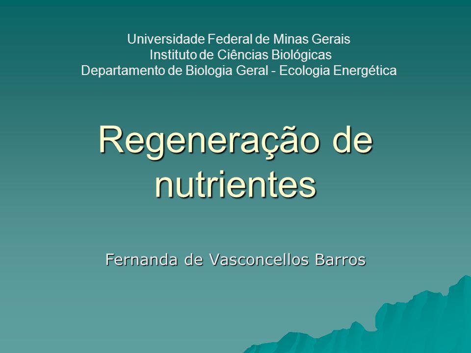 Regeneração de nutrientes Fernanda de Vasconcellos Barros Universidade Federal de Minas Gerais Instituto de Ciências Biológicas Departamento de Biolog