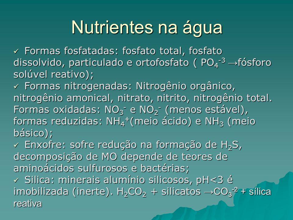Nutrientes na água Formas fosfatadas: fosfato total, fosfato Formas fosfatadas: fosfato total, fosfato dissolvido, particulado e ortofosfato ( PO 4 -3