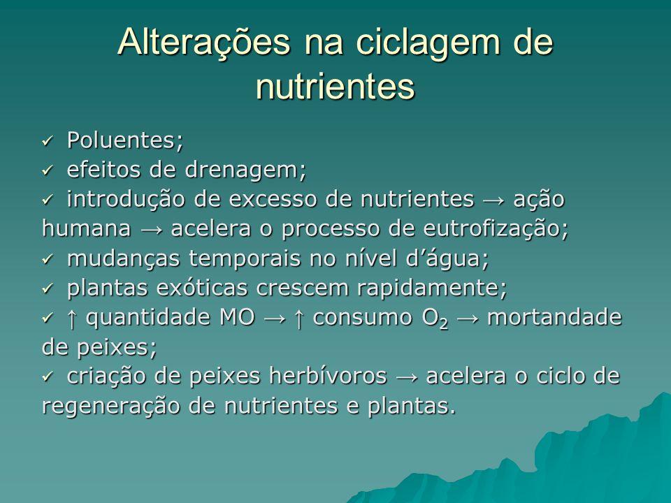 Poluentes; Poluentes; efeitos de drenagem; efeitos de drenagem; introdução de excesso de nutrientes ação introdução de excesso de nutrientes ação huma