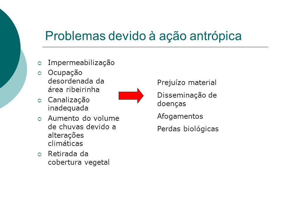Problemas devido à ação antrópica Impermeabilização Ocupação desordenada da área ribeirinha Canalização inadequada Aumento do volume de chuvas devido