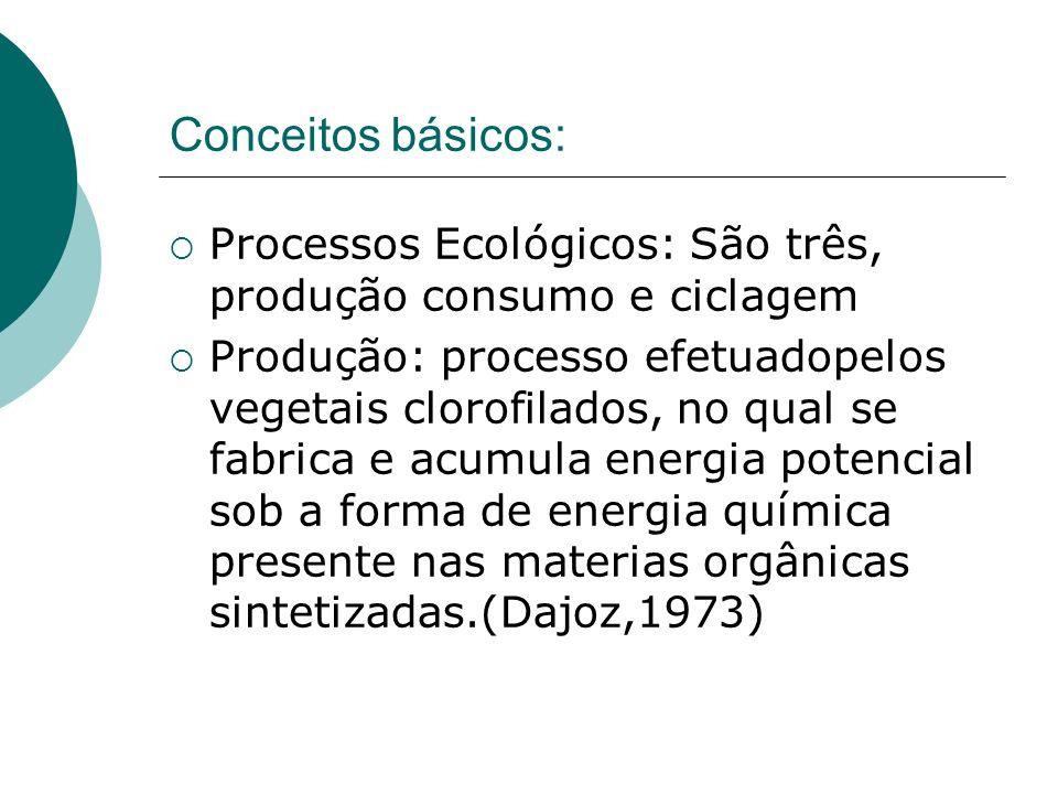 Conceitos básicos: Processos Ecológicos: São três, produção consumo e ciclagem Produção: processo efetuadopelos vegetais clorofilados, no qual se fabr