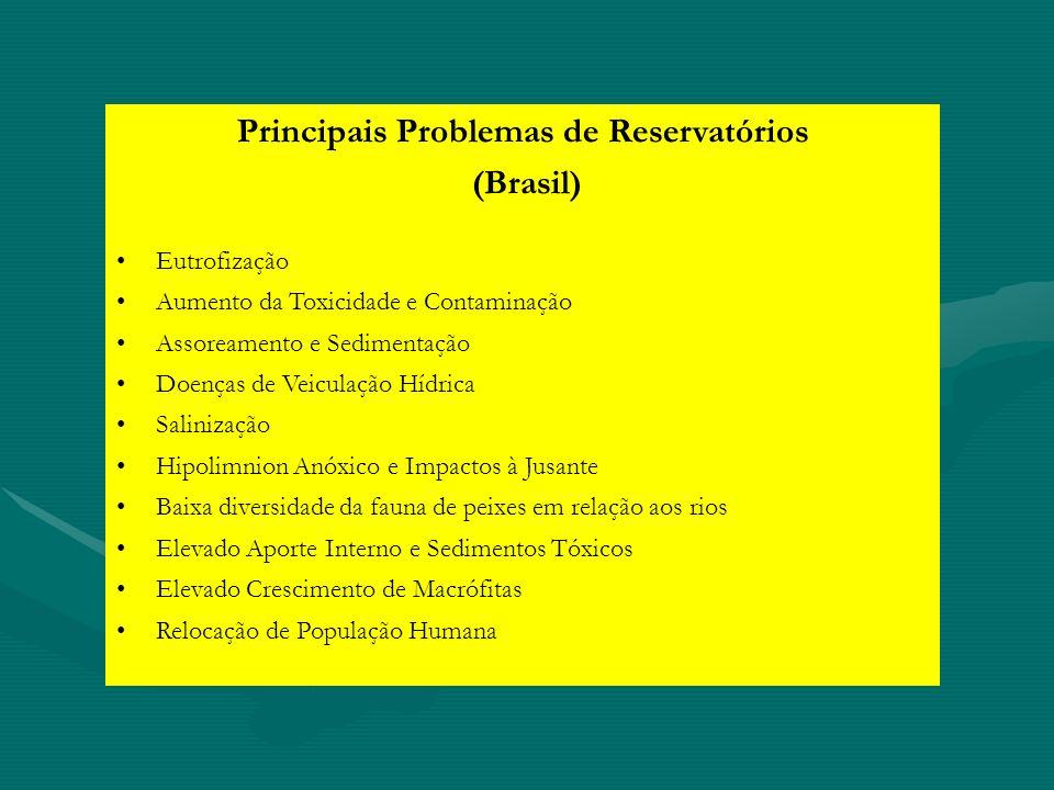 Principais Problemas de Reservatórios (Brasil) Eutrofização Aumento da Toxicidade e Contaminação Assoreamento e Sedimentação Doenças de Veiculação Híd