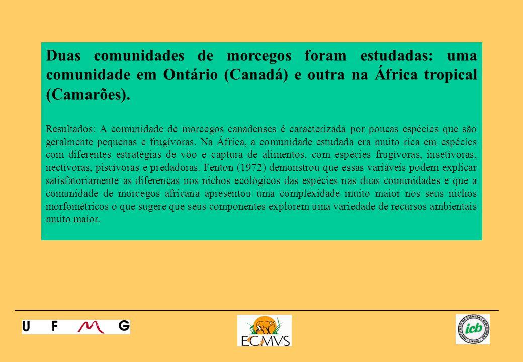 Duas comunidades de morcegos foram estudadas: uma comunidade em Ontário (Canadá) e outra na África tropical (Camarões). Resultados: A comunidade de mo