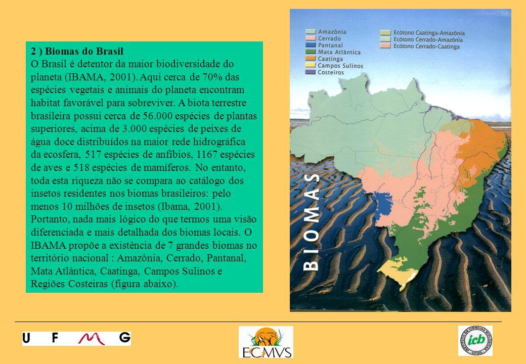 2 ) Biomas do Brasil O Brasil é detentor da maior biodiversidade do planeta (IBAMA, 2001). Aqui cerca de 70% das espécies vegetais e animais do planet