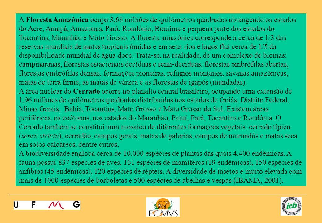 A Floresta Amazônica ocupa 3,68 milhões de quilômetros quadrados abrangendo os estados do Acre, Amapá, Amazonas, Pará, Rondônia, Roraima e pequena par