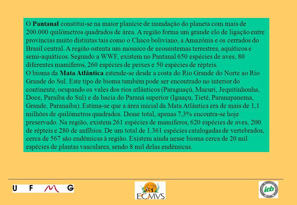 A Caatinga é o bioma dominante da região nordestina ocupando uma área de 737.000 quilômetros quadrados distribuída entre os estados da Bahia, Pernambuco, Piauí, Ceará, Rio Grande do Norte, Paraíba, Sergipe, Alagoas, Maranhão e também considerável porção do norte de Minas Gerais.
