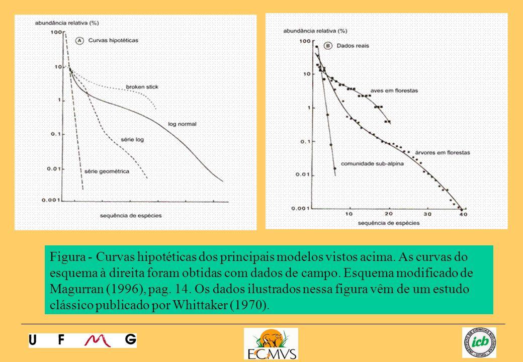 Figura - Curvas hipotéticas dos principais modelos vistos acima. As curvas do esquema à direita foram obtidas com dados de campo. Esquema modificado d