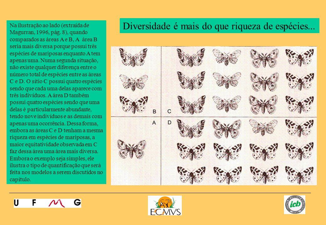 Na ilustração ao lado (extraída de Magurran, 1996, pág. 8), quando comparados as áreas A e B, A área B seria mais diversa porque possui três espécies