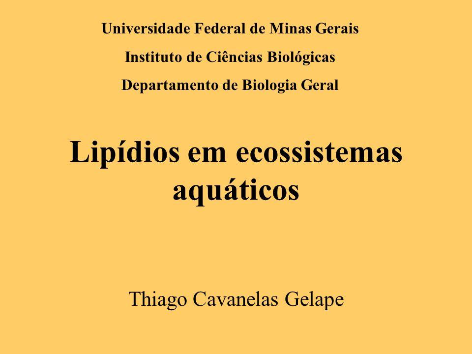 Lipídios em ecossistemas aquáticos Thiago Cavanelas Gelape Universidade Federal de Minas Gerais Instituto de Ciências Biológicas Departamento de Biolo
