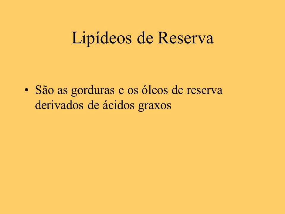 Lipídeos de Reserva São as gorduras e os óleos de reserva derivados de ácidos graxos