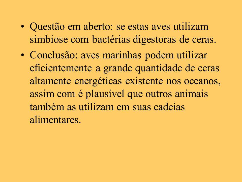 Questão em aberto: se estas aves utilizam simbiose com bactérias digestoras de ceras. Conclusão: aves marinhas podem utilizar eficientemente a grande