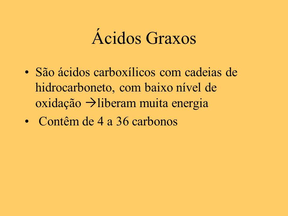 Ácidos Graxos São ácidos carboxílicos com cadeias de hidrocarboneto, com baixo nível de oxidação liberam muita energia Contêm de 4 a 36 carbonos