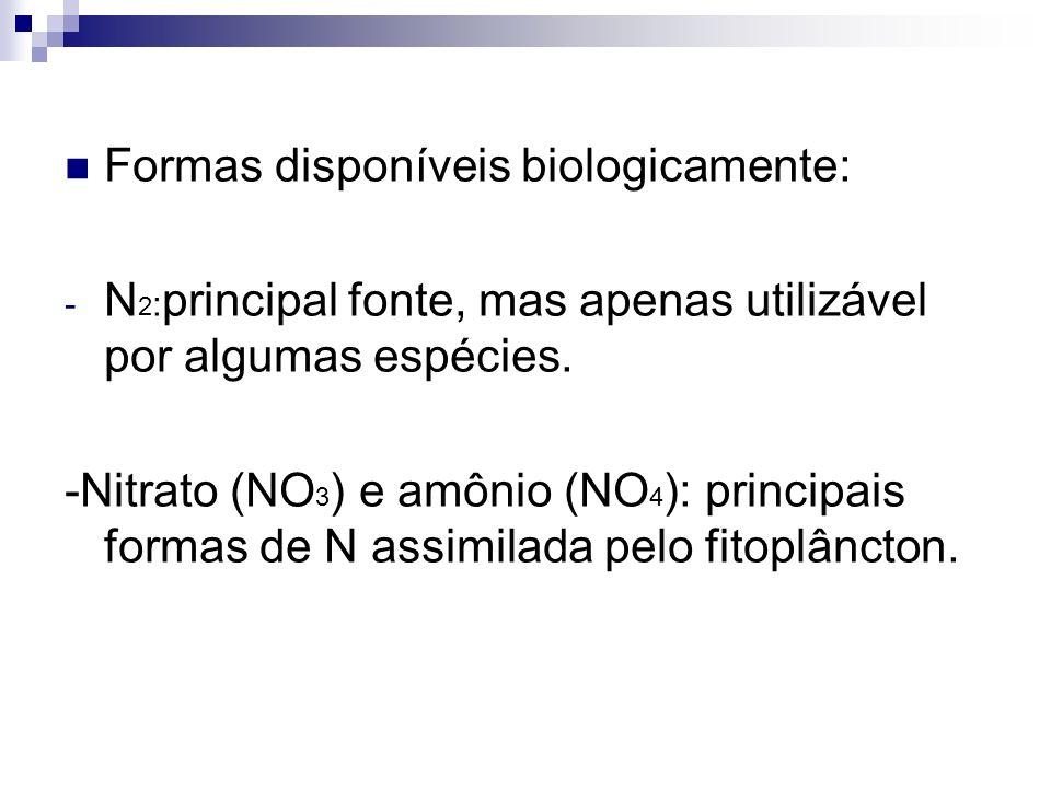 Formas disponíveis biologicamente: - N 2 : principal fonte, mas apenas utilizável por algumas espécies. -Nitrato (NO 3 ) e amônio (NO 4 ): principais