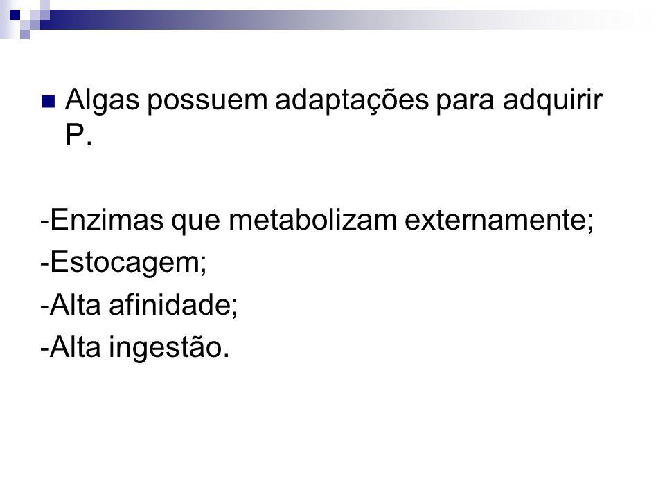 Algas possuem adaptações para adquirir P. -Enzimas que metabolizam externamente; -Estocagem; -Alta afinidade; -Alta ingestão.