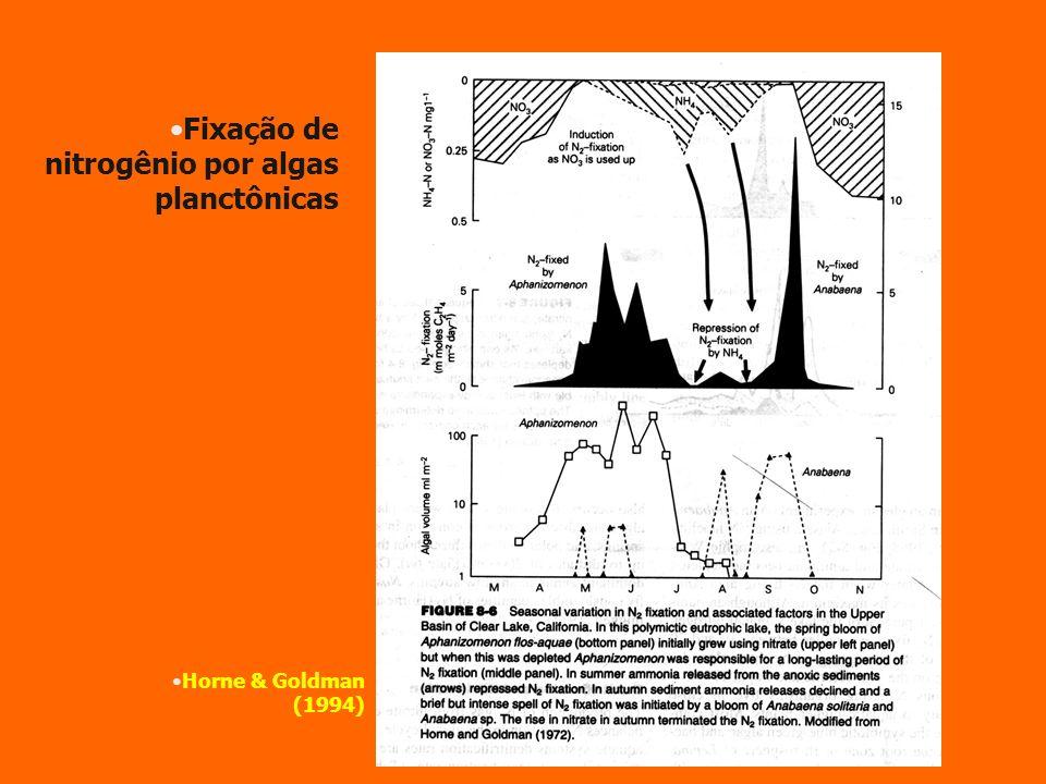 Fixação de nitrogênio por algas planctônicas Horne & Goldman (1994)