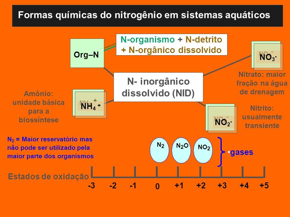 Org–N N 2 = Maior reservatório mas não pode ser utilizado pela maior parte dos organismos Fixo ou N- disponível N-organismo + N-detrito + N-orgânico d