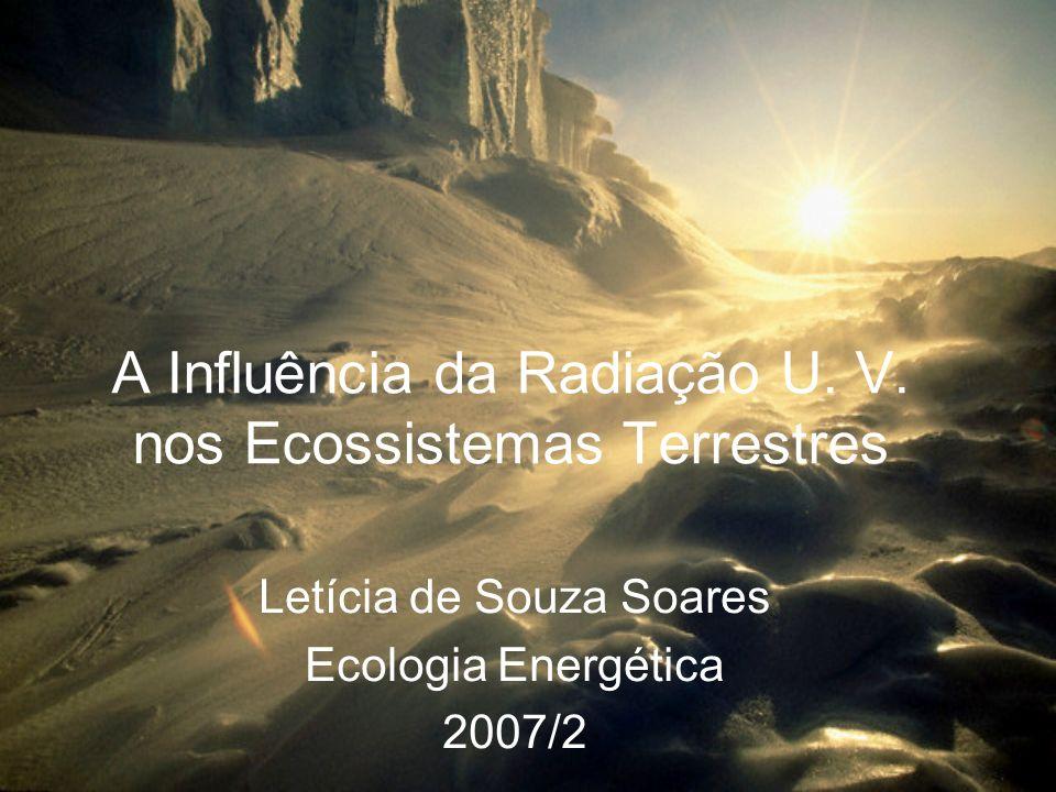 A Influência da Radiação U. V. nos Ecossistemas Terrestres Letícia de Souza Soares Ecologia Energética 2007/2