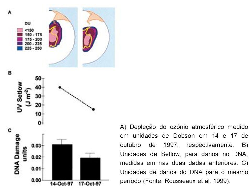 A) Depleção do ozônio atmosférico medido em unidades de Dobson em 14 e 17 de outubro de 1997, respectivamente. B) Unidades de Setlow, para danos no DN