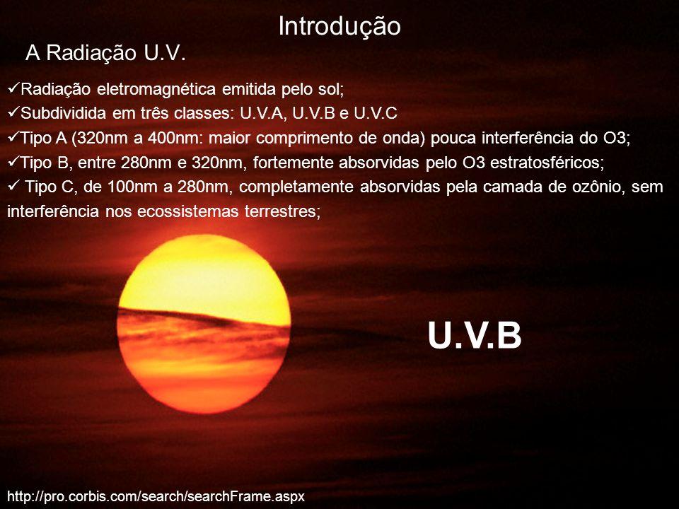 http://pro.corbis.com/search/searchFrame.aspx Introdução A Radiação U.V. Radiação eletromagnética emitida pelo sol; Subdividida em três classes: U.V.A