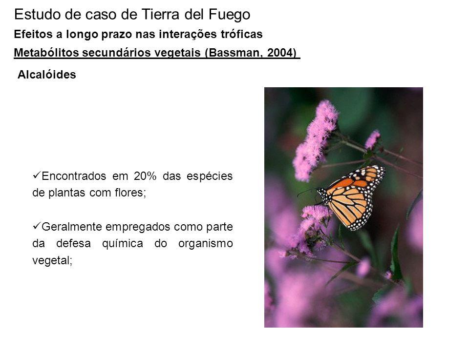 Estudo de caso de Tierra del Fuego Efeitos a longo prazo nas interações tróficas Metabólitos secundários vegetais (Bassman, 2004) Alcalóides Encontrad