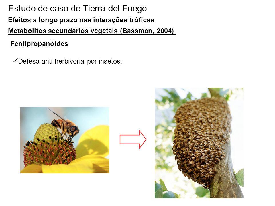 Estudo de caso de Tierra del Fuego Efeitos a longo prazo nas interações tróficas Metabólitos secundários vegetais (Bassman, 2004) Fenilpropanóides Def