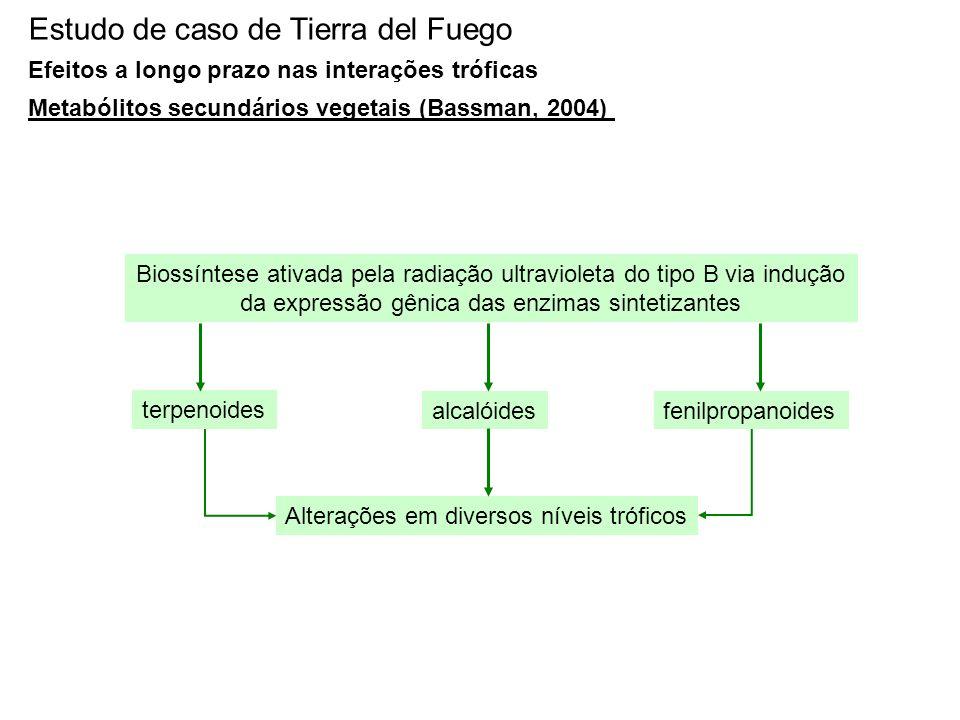 Estudo de caso de Tierra del Fuego Efeitos a longo prazo nas interações tróficas Metabólitos secundários vegetais (Bassman, 2004) Biossíntese ativada