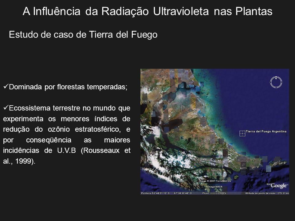 A Influência da Radiação Ultravioleta nas Plantas Estudo de caso de Tierra del Fuego Dominada por florestas temperadas; Ecossistema terrestre no mundo
