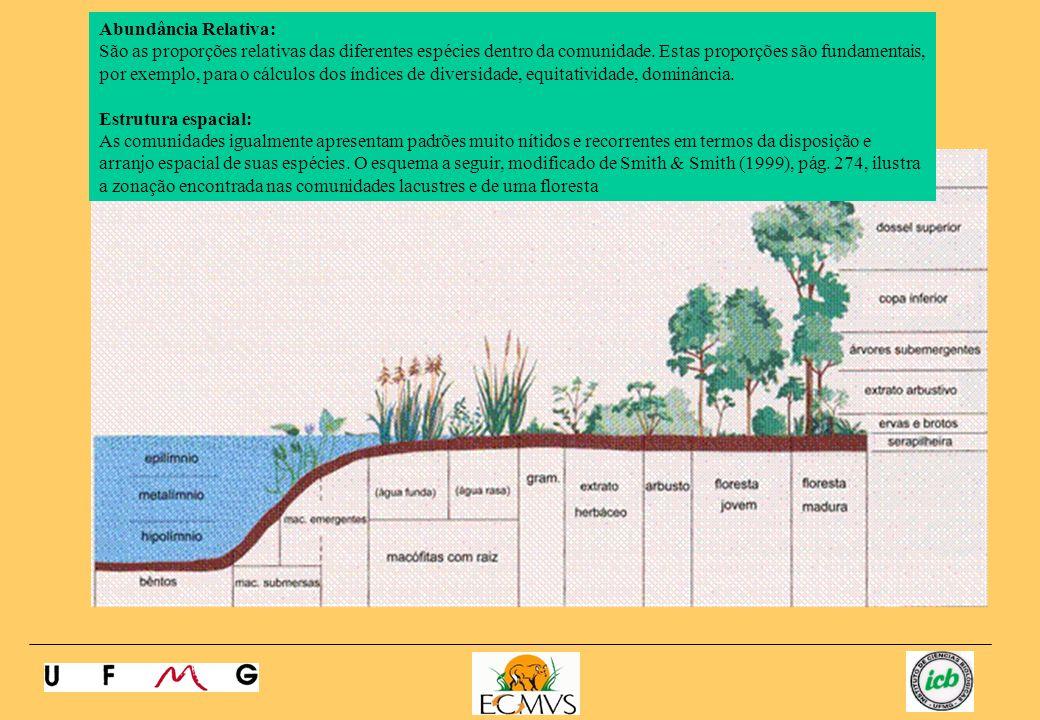 Estrutura Trófica: Relações alimentares dentro da comunidade que determinam o fluxo de energia e a dinâmica dos ciclos de materiais entre produtores, herbívoros e carnívoros.