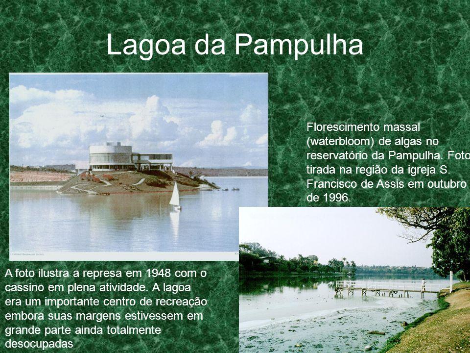Lagoa da Pampulha Florescimento massal (waterbloom) de algas no reservatório da Pampulha. Foto tirada na região da igreja S. Francisco de Assis em out