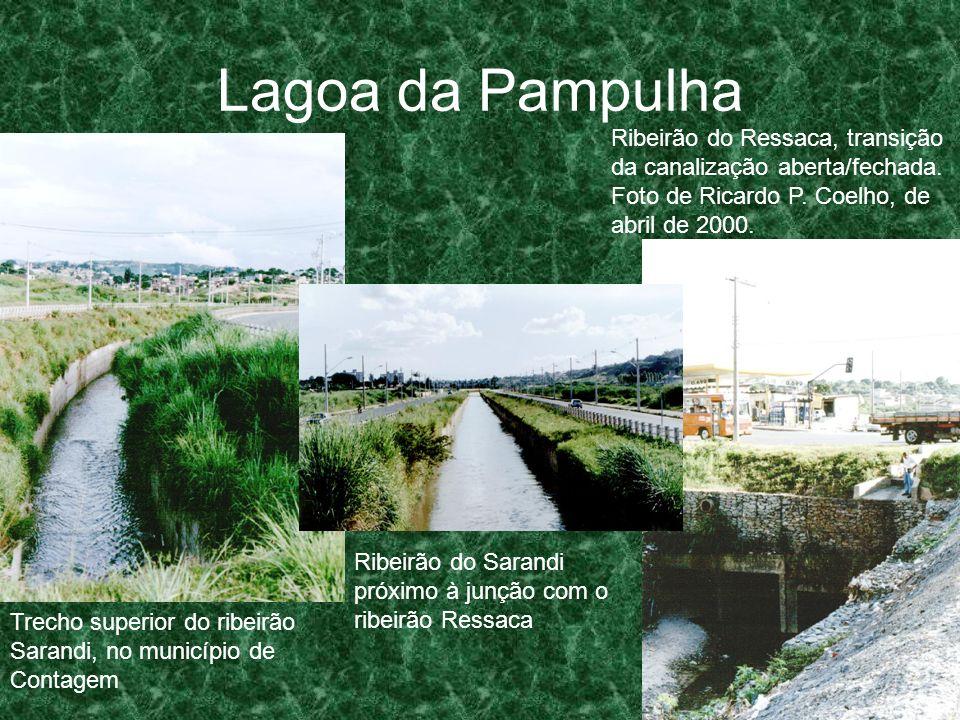 Lagoa da Pampulha Ribeirão do Ressaca, transição da canalização aberta/fechada. Foto de Ricardo P. Coelho, de abril de 2000. Ribeirão do Sarandi próxi