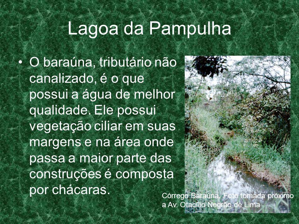 Lagoa da Pampulha O baraúna, tributário não canalizado, é o que possui a água de melhor qualidade. Ele possui vegetação ciliar em suas margens e na ár