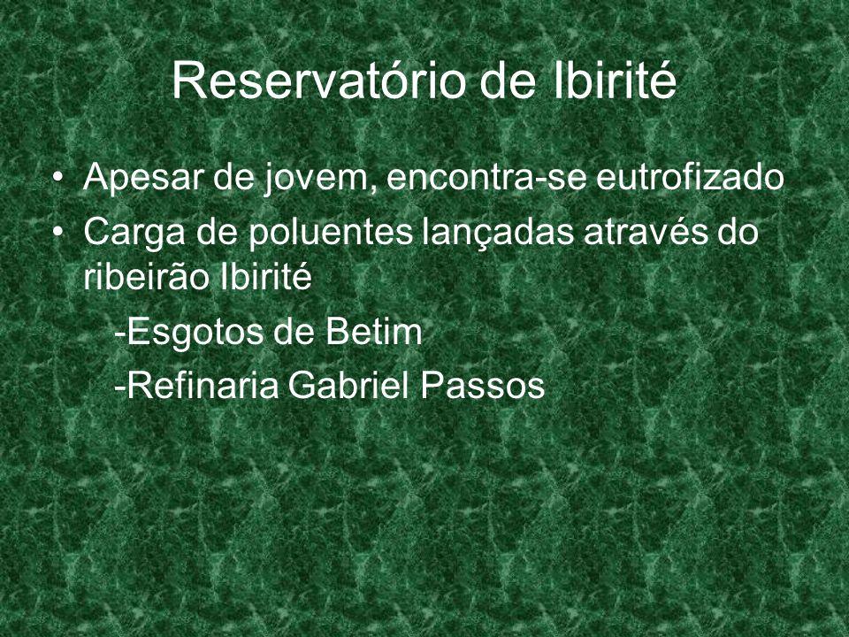 Reservatório de Ibirité Apesar de jovem, encontra-se eutrofizado Carga de poluentes lançadas através do ribeirão Ibirité -Esgotos de Betim -Refinaria