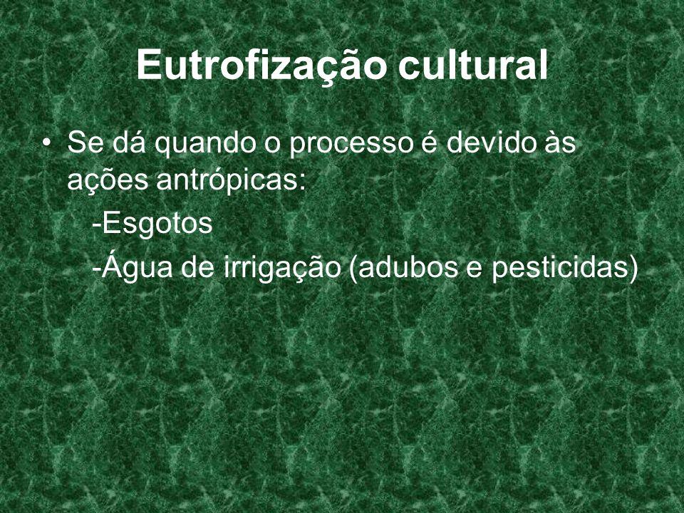 Eutrofização cultural Se dá quando o processo é devido às ações antrópicas: -Esgotos -Água de irrigação (adubos e pesticidas)