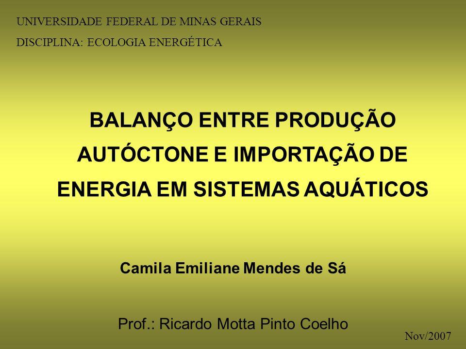 BALANÇO ENTRE PRODUÇÃO AUTÓCTONE E IMPORTAÇÃO DE ENERGIA EM SISTEMAS AQUÁTICOS Camila Emiliane Mendes de Sá Prof.: Ricardo Motta Pinto Coelho UNIVERSI