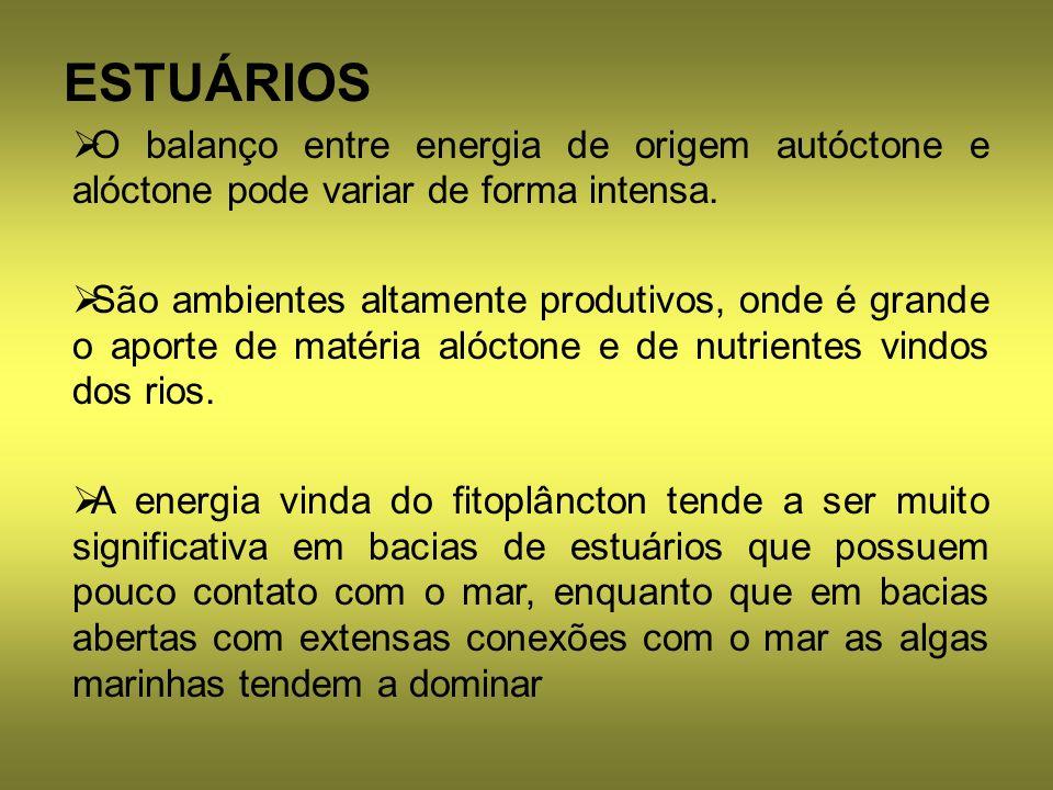 O balanço entre energia de origem autóctone e alóctone pode variar de forma intensa. São ambientes altamente produtivos, onde é grande o aporte de mat