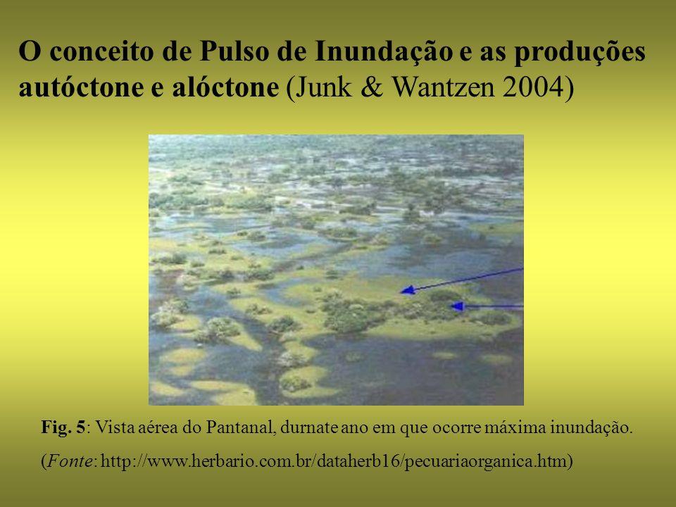 O conceito de Pulso de Inundação e as produções autóctone e alóctone (Junk & Wantzen 2004) Fig. 5: Vista aérea do Pantanal, durnate ano em que ocorre