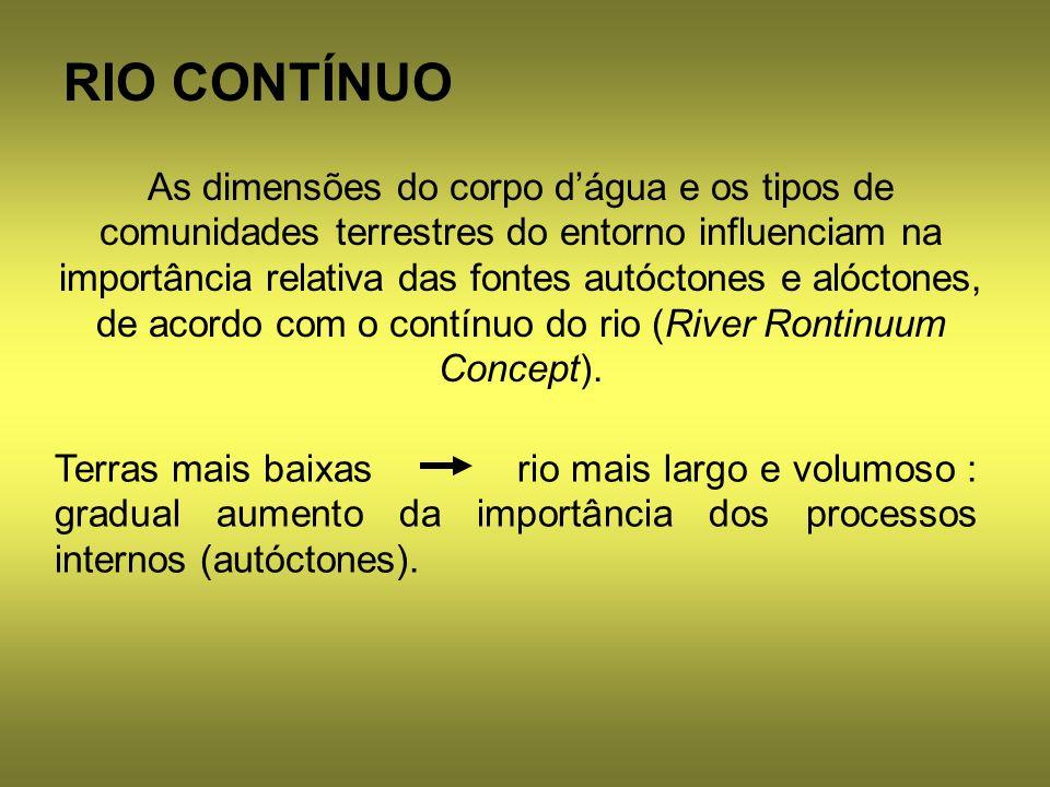 RIO CONTÍNUO As dimensões do corpo dágua e os tipos de comunidades terrestres do entorno influenciam na importância relativa das fontes autóctones e a