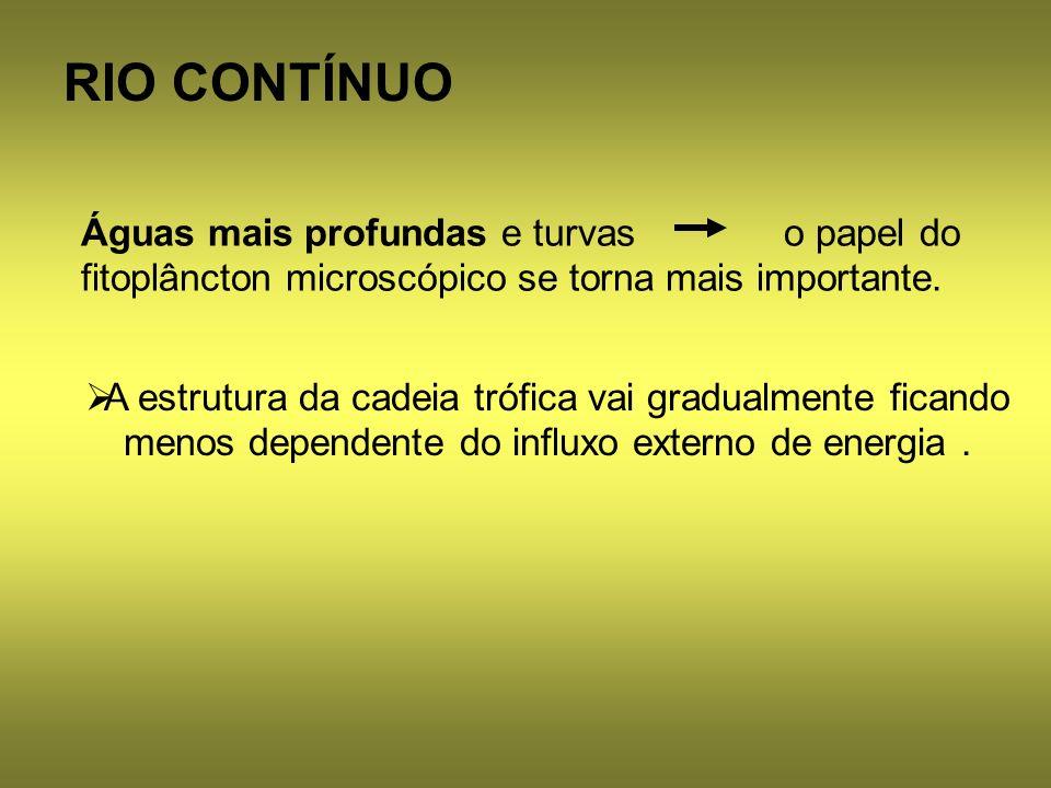 RIO CONTÍNUO A estrutura da cadeia trófica vai gradualmente ficando menos dependente do influxo externo de energia. Águas mais profundas e turvas o pa