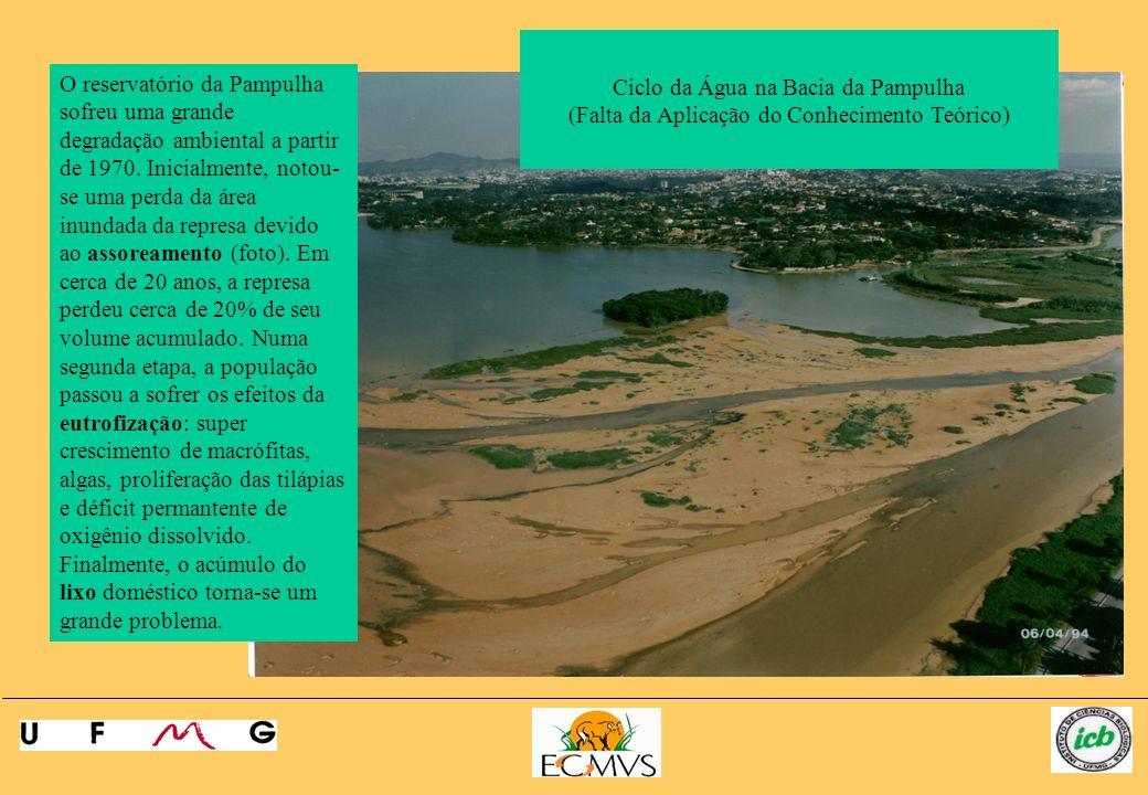 O reservatório da Pampulha sofreu uma grande degradação ambiental a partir de 1970. Inicialmente, notou- se uma perda da área inundada da represa devi