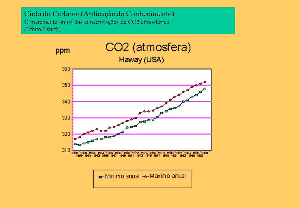 Ciclo do Carbono (Aplicação do Conhecimento) O incremento anual das concentrações de CO2 atmosférico (Efeito Estufa)