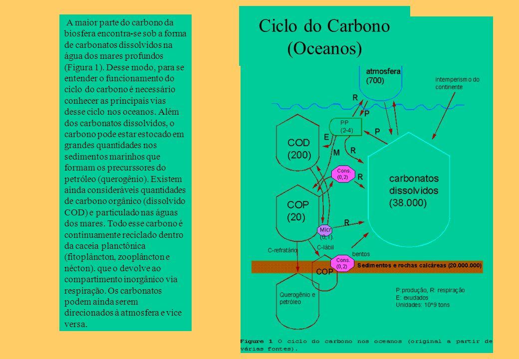 A maior parte do carbono da biosfera encontra-se sob a forma de carbonatos dissolvidos na água dos mares profundos (Figura 1). Desse modo, para se ent