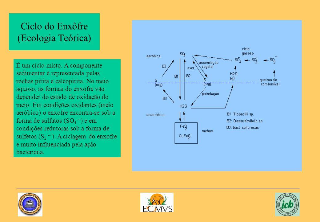 Ciclo do Enxôfre (Ecologia Teórica) É um ciclo misto. A componente sedimentar é representada pelas rochas pirita e calcopirita. No meio aquoso, as for
