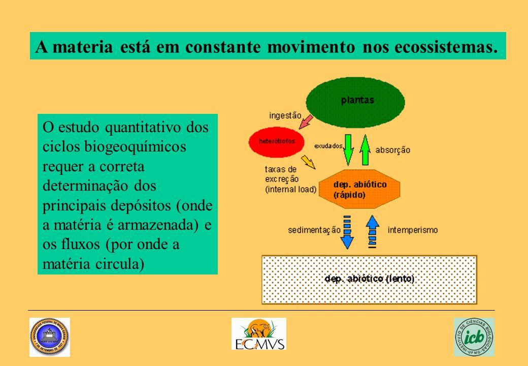 O estudo quantitativo dos ciclos biogeoquímicos requer a correta determinação dos principais depósitos (onde a matéria é armazenada) e os fluxos (por