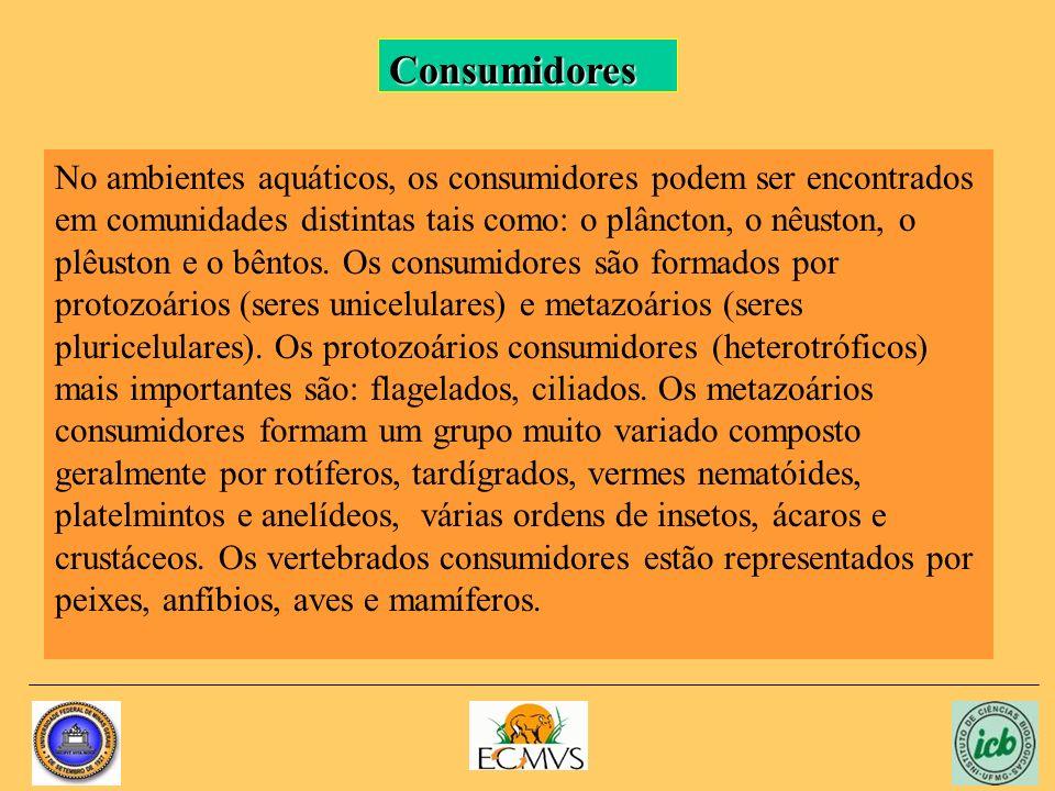 No ambientes aquáticos, os consumidores podem ser encontrados em comunidades distintas tais como: o plâncton, o nêuston, o plêuston e o bêntos. Os con