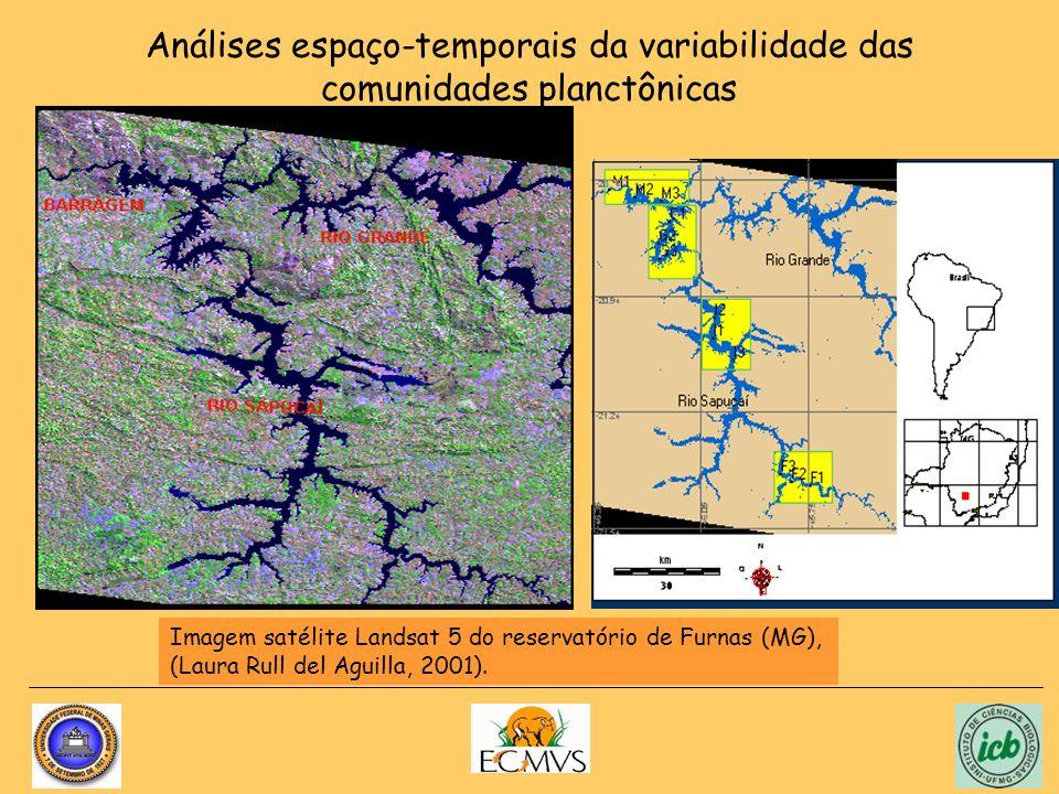 Imagem satélite Landsat 5 do reservatório de Furnas (MG), (Laura Rull del Aguilla, 2001). Análises espaço-temporais da variabilidade das comunidades p
