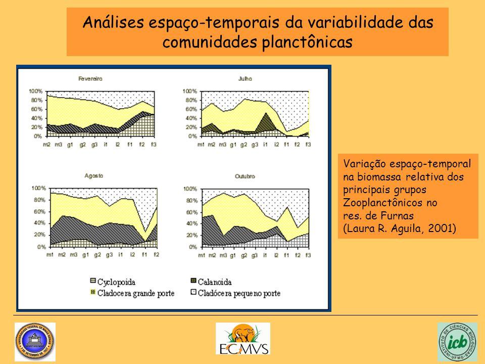 Análises espaço-temporais da variabilidade das comunidades planctônicas Variação espaço-temporal na biomassa relativa dos principais grupos Zooplanctô